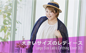 Large size ladies clothing (over 3L)